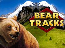 Медвежий Трек — автомат на Зеркле клуба GMSlots