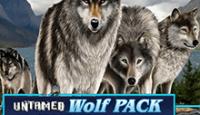 Дикая Волчья Стая